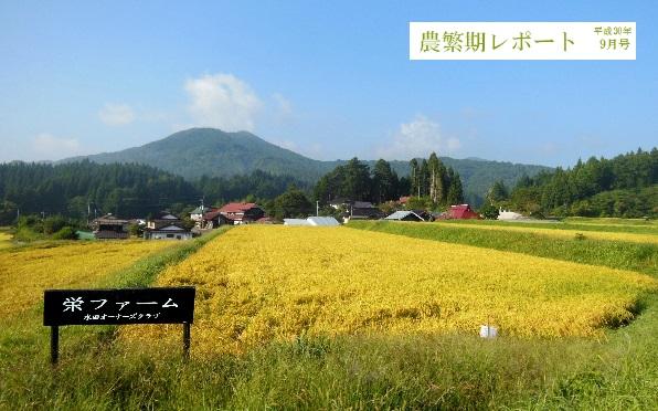 農繁期R3004